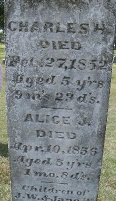 Alice J Laughlin