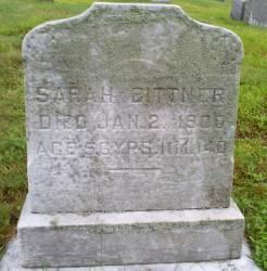 Sarah <i>Brown</i> Bittner