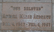 Andrea Marie Andrews