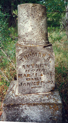 Thomas A. Antney