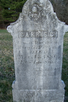 Carrie G. Perham