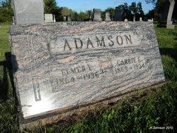 Elmer Ellsworth Adamson