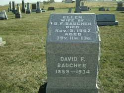 David F Baucher