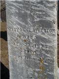 Mary Ann L Atherton