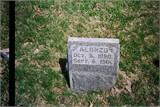 Alonzo Heflin
