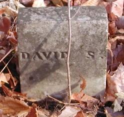 David S Bush