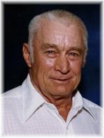 J V Arnold