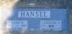 Caroline Kay <i>Novotny</i> Hansel