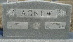 Watie Agnew