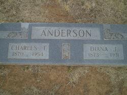 Diana Jane <i>Tucker</i> Anderson
