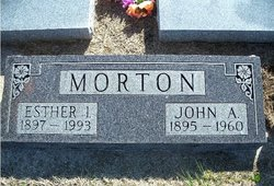 John Alfred Morton