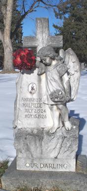 Anthony M Malpiede