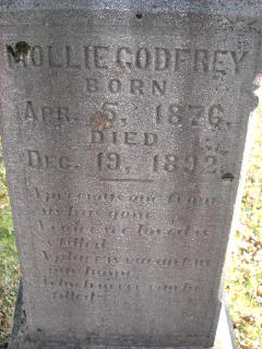 Mollie Godfrey