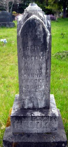 Albert Brooks
