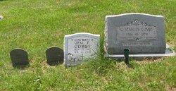 Sue Ann Combs