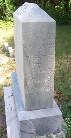 Elvilra S. Adams