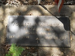 Forrest Nelson Anderson