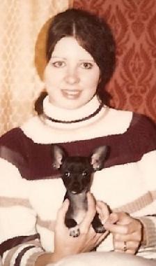 Dee Dee Chihuahua Dog