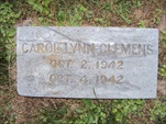 Carol Lynn Clemens