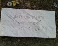 Mary Ann Farmer