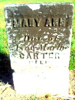 Mary Ann Carter