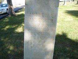 Andrew L Andersen