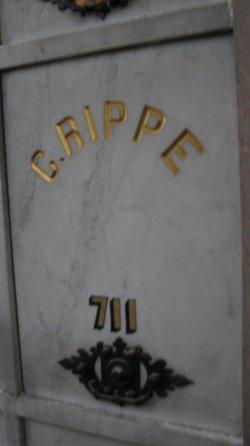 Elizabeth Lizzie Rippe