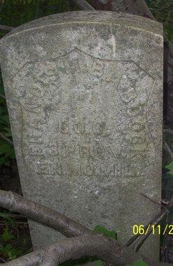 Francis Marion B Babcock