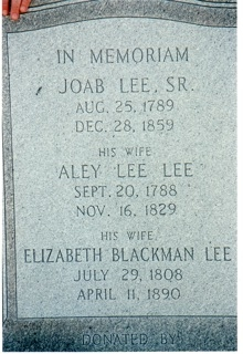Alley Allie <i>Lee</i> Lee