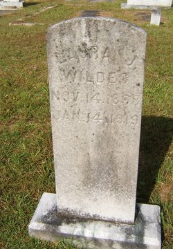 Laura Janet <i>Musgrove</i> Wildes
