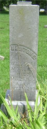 Newton Elsworth Morlan