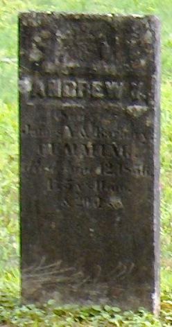 Andrew Y Cumming