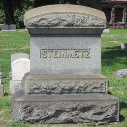 Anna M Steinmetz