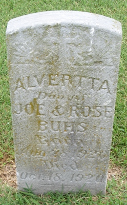 Alvertta Buhs