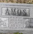 Lee Roy Amos