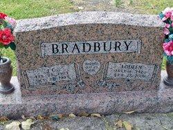 J C Bradbury, Jr