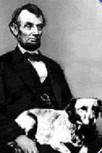 Fido Lincoln
