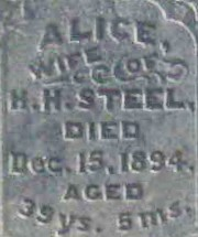 Alice <i>Bryant</i> Steele