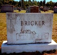 David Scott Bricker
