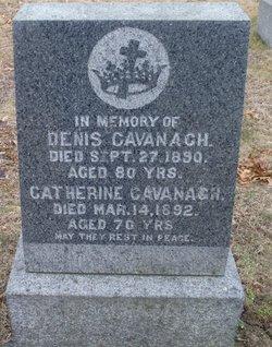 Elizabeth T Cavanagh