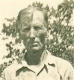 Davis D Forester