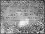 Elwyn Walter Johnson
