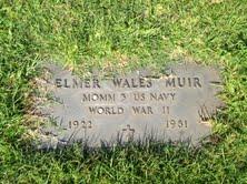 Elmer Wales Muir