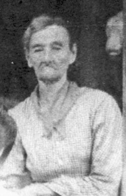 William Elia Wilbern Windham