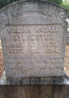 William McCall Sylvester