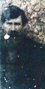 Pvt Lazarus W. Bear