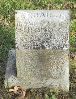 Sarah J Hickox