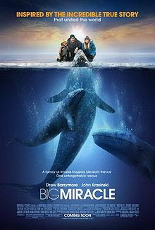 Kanik Bone Bam Bam Whale