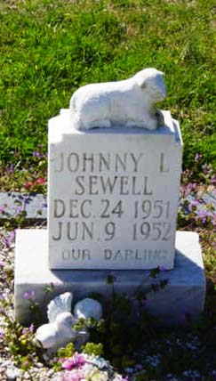 Johnny Levi Sewell