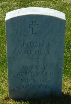 Anton P Mitchell